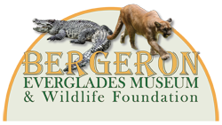 Bergeron Everglades Museum & Wildlife Foundation