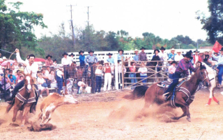 Ron Bergeron Roping with Freddy Gomez. Hollywood Rodeo, 1990