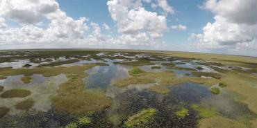 Areal view of the flooded everglades